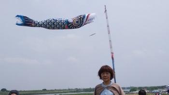 鯉のぼり6.jpg