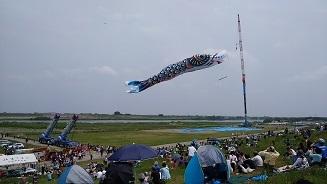 鯉のぼり4.jpg